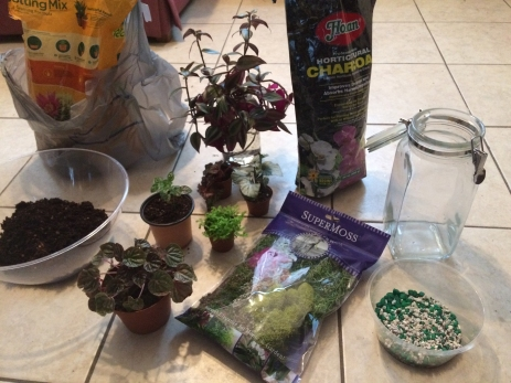 You only need a handful of supplies to make a closed terrarium - a glass container with a lid, pebbles, horticultural charcoal, moss, soil, and plants.